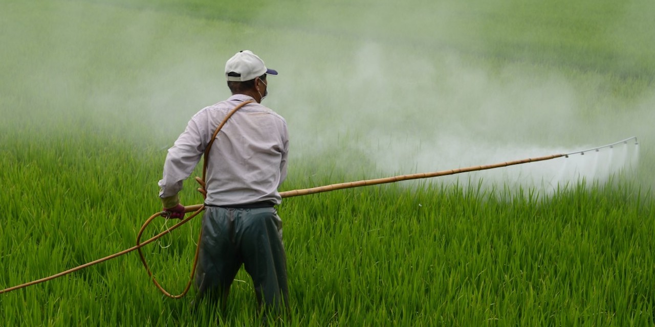 Pesticides1280