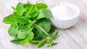 PureCircle's approach to growing stevia is focused on science and sustainability.