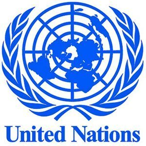 United Nations details implementation of non-proliferation resolution.