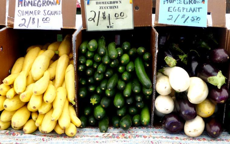UMass Extension vegetable education specialist receives $144,617 grant