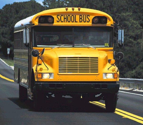 Large school bus1