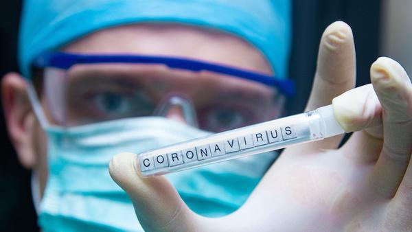 Large coronavirus6