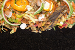 Greens and browns are the colors to go for when composting.