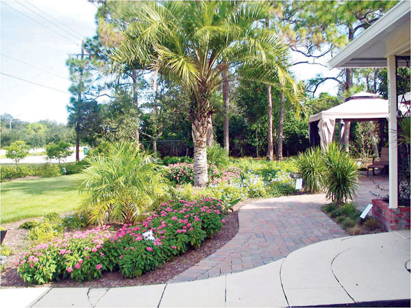 Do It Yourself Home Design: Do-it-yourself Landscape