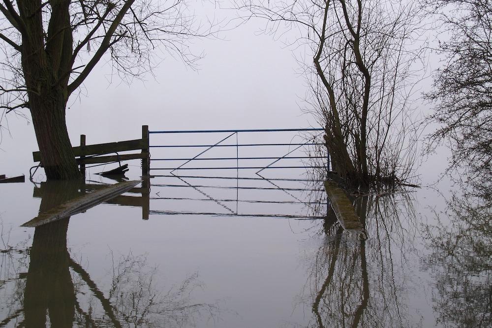 Flood(1000)