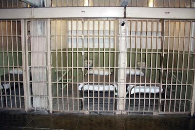 Medium prison bars