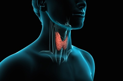 Hypoparathyroidism is the last endocrine disorder for which there is no hormone treatment.