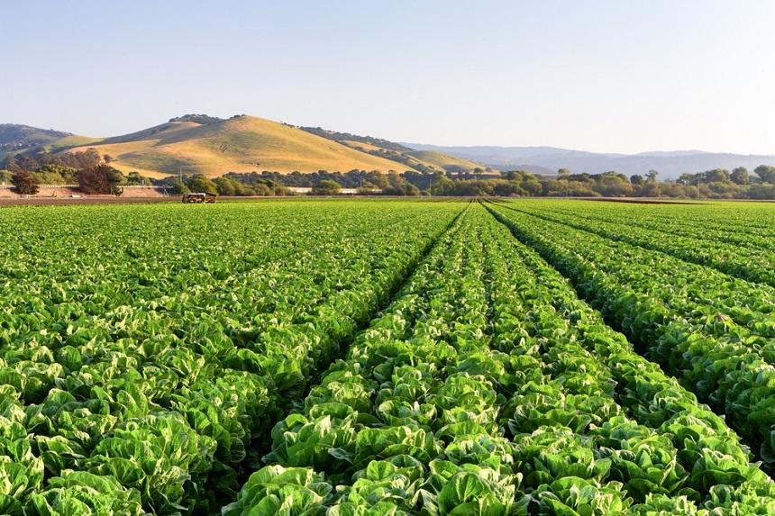 In 2015, the program had 830,000 acres.