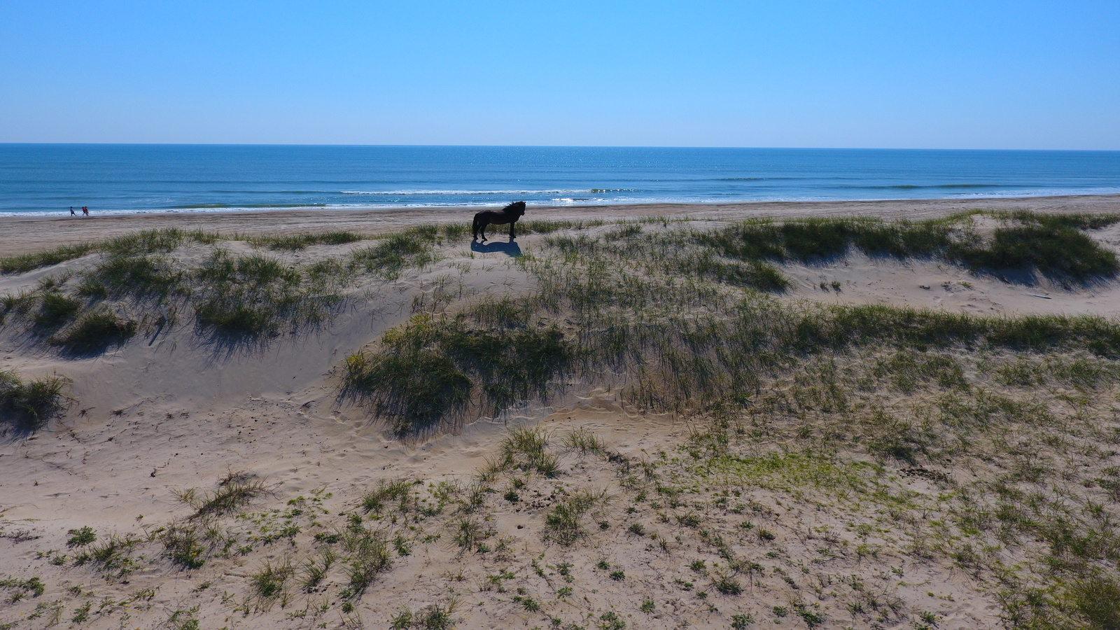 Horseouterbanks 2