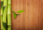 Bamboo goes through an extensive process from harvest to flooring, in which much energy can be wasted, depending on the practices of the company.