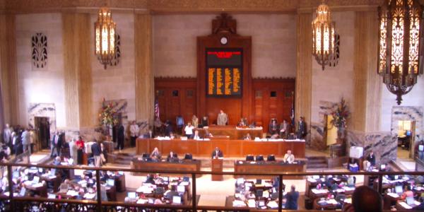 Large louisiana house of representatives