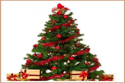 Medium cristmastree