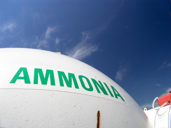 Every person who works at an ammonia-related function, including tool bars and equipment handling, should be certified.