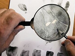 The laboratory processes specimens for government, forensic and criminal justice organizations.