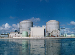 NRC discusses assessment of St. Lucie nuclear plant