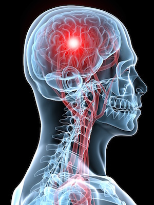 The board discussed legislation regarding concussions during school and/or school events.