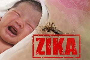 Hawaii prepares to battle the Zika virus.
