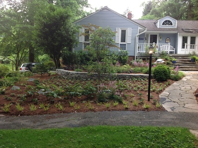 Rainscapes are landscape features such as berms, terraces, swales, rain gardens, porous pavement and infiltration trenches that direct and retain rainwater.