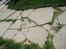 Medium cracks in sidewalk