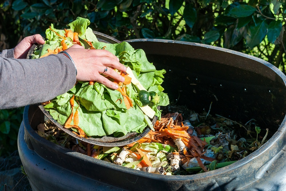 Compostgreenbin