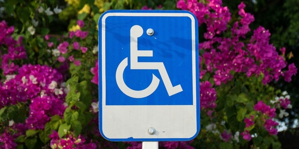 Large handicapped sign 09
