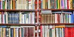 La. bookstores win injunction in 'age verification' suit