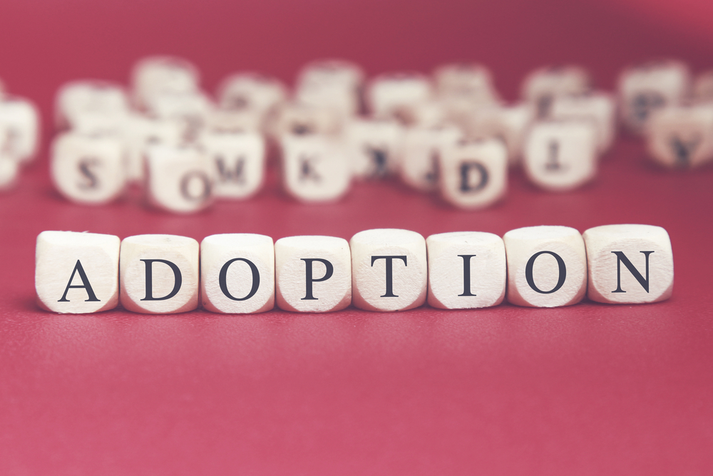 Shutterstock adoption blocks
