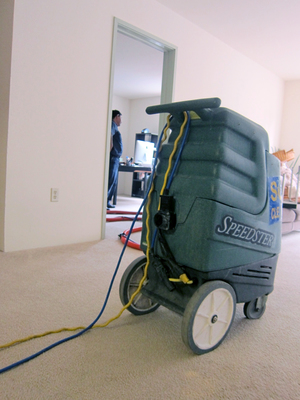 Regular professional cleaning can keep a carpet looking like new and the warranty intact.