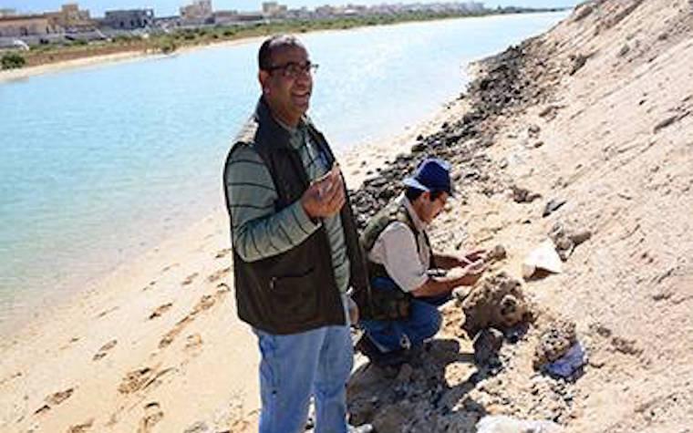 UAE University research team investigates sea level changes