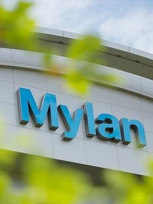 Large mylan