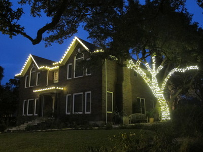 At Austin's Plantscape Solutions, it's unusual for a homeowner to ask for a tree wrap, like the one pictured here, but it does happen. Lighting up the house is typically the top priority of Plantscape Solutions' clients.