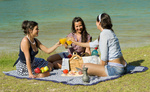 Close proximity to lakes provide many a perfect picnic opportunity.