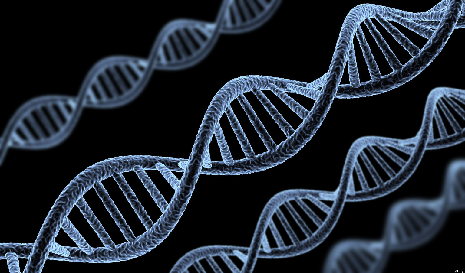 Scientists discover new genetic immune disorder