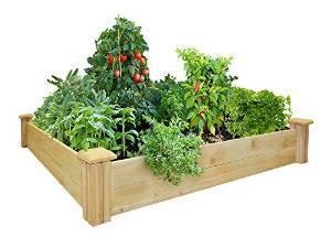 48-by-48-Inch Cedar Raised Garden Bed