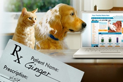 Roadrunner provides individualized prescription products to veterinary clinics and pet owners nationwide.