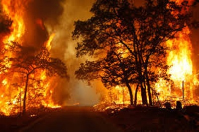 Medium wildfire