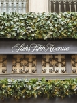 New Jersey consumer alleges Saks' terms, conditions illegal