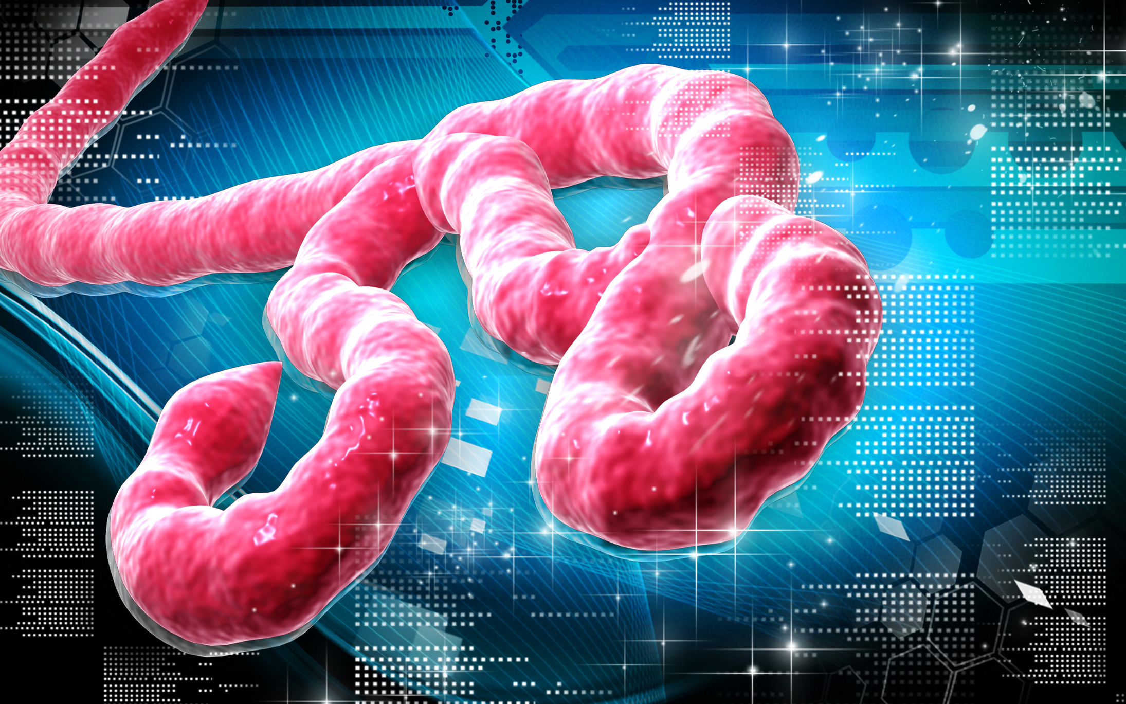 Novavax begins Ebola vaccine clinical trial phase 1