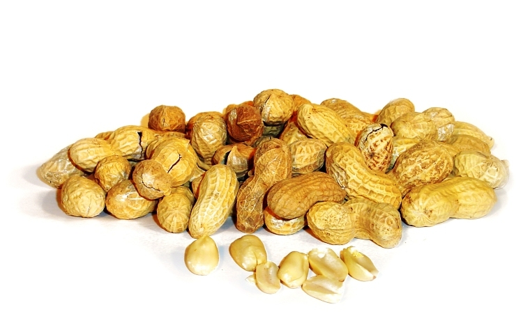 DNA vaccine for peanut allergy fast-tracked