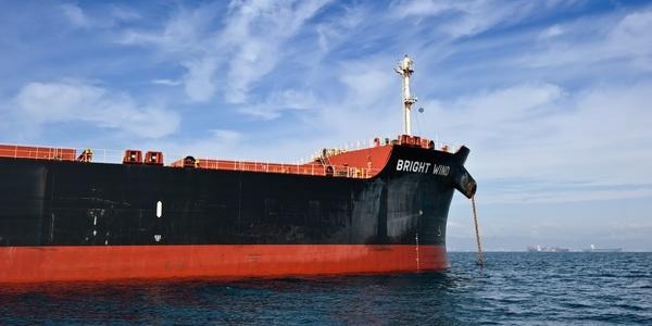Large cargo ship 08