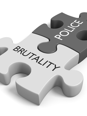 Large police brutality puzzle