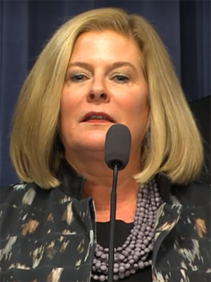 Senate Women's Caucus co-chair Karen McConnaughay (R-St. Charles) at an April 11 press conference.