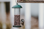 Bird feeders are quite popular, but most bird lovers could diversify their offerings a little.