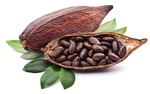 According to recent studies, cocoa could benefit cardiovascular health.