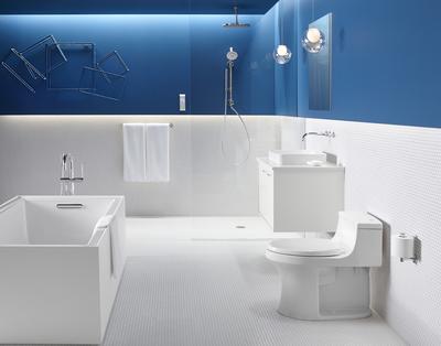 The San Souci TOuchless toilet from Kohler.