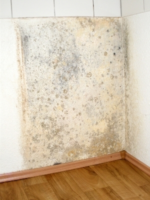 Bathroommold