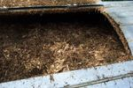 Compost is a great way to reduce the amount of waste that Austin residents put into landfills. Fallen leaves are an essential part of a healthy compost pile.