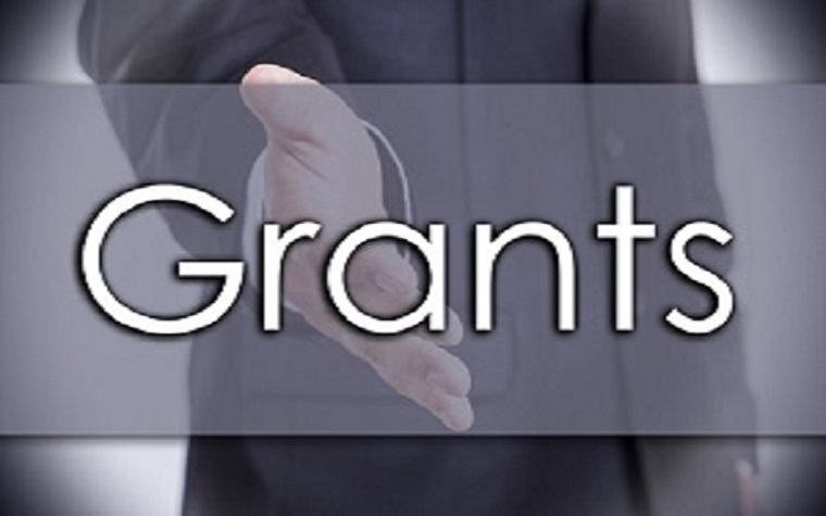 The grants will support undergraduate and honors student researchers.