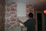 Removing old wallpaper isn't complicated, but it usually takes a while.