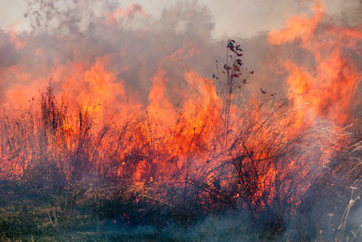 Missouri's conservation department now accepting applications for firefighting grants.